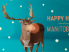 2 WHY Songs On MANITOBA MUSIC Holiday Player